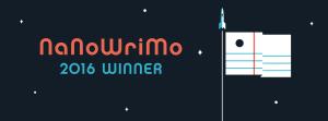 nanowrimo-winner